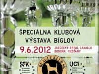 Špeciálna klubová výstava bíglov dňa 9.6.2012 v Piešťanoch